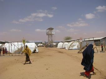 「アフリカの角」緊急事態 ソマリア、エチオピア、ケニア介入