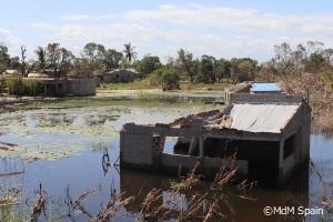 冠水地域に取り残された人々にマラリアの感染が拡大